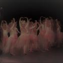 TOZ by Esther dansschool - Achtergrond site